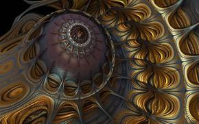 Picture pattern, Medusa, fractal, the volume