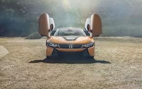 Picture door, front view, BMW i8