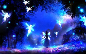 Picture forest, night, fantasy, fairies, the fairy Queen