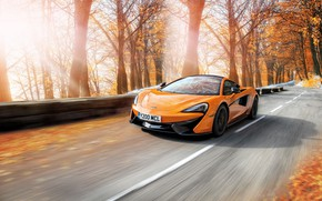 Picture road, autumn, trees, orange, McLaren, speed, rushes