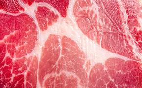 Picture macro, texture, meat, pork