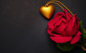 Picture flowers, heart, rose, pendant, red, love, black background, red, heart, flowers, romantic, roses