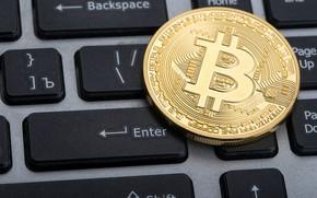 Wallpaper bitcoin, currency, logo, keyboard, bitcoin, keyboard