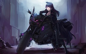 Picture cat, girl, night, motorcycle