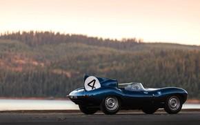 Picture Retro, Sport, Car, Jaguar D-Type