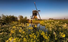 Picture mill, channel, Netherlands, Zuid-Holland, Streefkerk