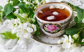 Picture flowers, branches, tea, spring, petals
