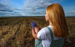 Picture field, girl, red, cornflowers, Sergeev Sergey