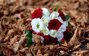 Picture autumn, foliage, roses, bouquet, eustoma