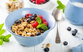 Picture berries, Breakfast, oatmeal, Iryna Melnyk