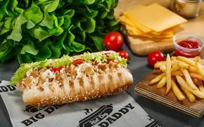 Picture greens, sandwich, tomato, tomatoes, potatoes, free
