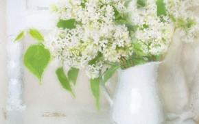 Picture bouquet, white, lilac