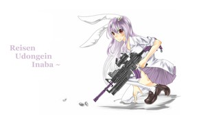 Picture machine, sleeve, mercenary, moon Bunny, Traveling And Keeping Inaba, touhou project