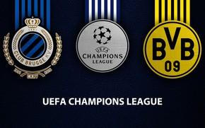 Picture wallpaper, sport, logo, football, Borussia Dortmund, UEFA Champions League, Club Brugge KV, Club Brugge KV …