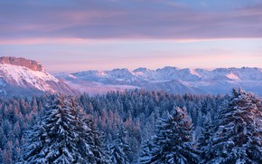 Picture forest, mountains, France, ate, France, Savoie, Savoie, The Mountains Bauges, Bauges Mountains