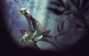 Picture Nature, Figure, Beetle, Illustration, Concept Art, Insect, Environments, Mantis, Mantis religiosa, Lorenzo Lanfranconi, by Lorenzo …