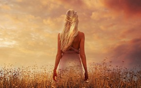 Wallpaper field, the sky, clouds, sunset, flowers, hair, back, plants, figure, dress, actress, meadow, art, hairstyle, ...
