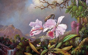 Picture picture, painting, canvas, Martin Johnson Head, Martin Johnson Heade, Orchids and hummingbirds