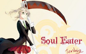 Picture girl, weapons, skirt, braid, Soul eater, Soul Eater