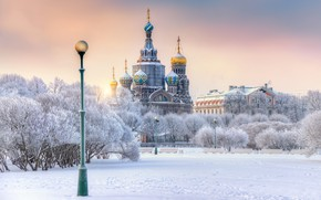 Picture winter, snow, trees, Saint Petersburg, lantern, Cathedral, temple, Russia, The field of Mars, Church of …