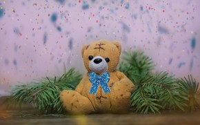 Picture branches, background, spruce, bear