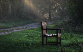 Picture road, nature, bench