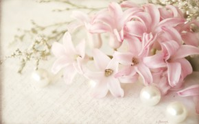Picture letter, pink, petals, beads, vintage, hyacinth