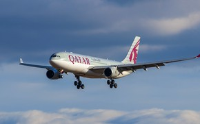 Picture liner, Airbus, Qatar Airways, A330-202