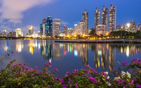 Picture flowers, the city, Thailand, Bangkok