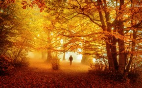 Picture autumn, nature, people
