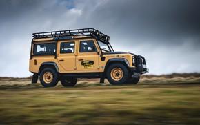 Picture Land Rover, Trophy, Defender 110