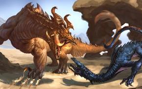 Picture dragons, fantasy, pair