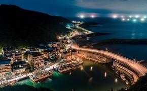 Picture sea, night, the city