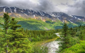 Picture greens, mountains, river, tree