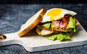 Picture egg, bread, meat, sandwich, layers, lettuce, cutting Board