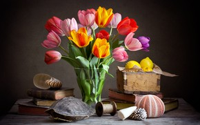 Picture the dark background, books, bouquet, tulips, shell, fruit, still life, lemons, composition, shell