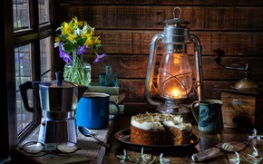 Picture flowers, style, books, lamp, glasses, snowdrops, mug, lantern, cake, still life, a bunch, daffodils, coffee …