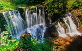 Picture greens, nature, waterfall