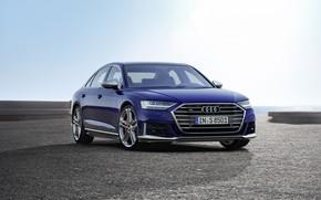 Picture Audi, sedan, Audi S8, 2019