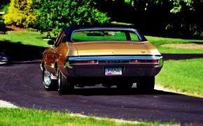Picture Car, Buick, Muscle classic