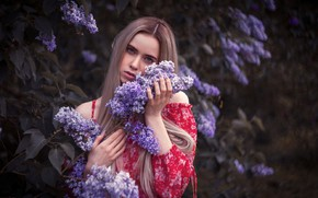 Picture look, girl, face, hair, Bush, spring, lilac, Denis Kotov