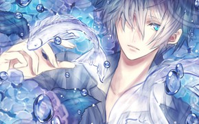 Picture bubbles, fish, anime, art, guy, the vertical pupil, mashiki