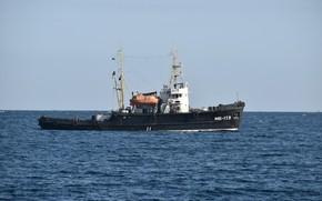 Picture tug, sea, The black sea
