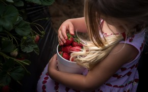 Picture summer, strawberry, girl