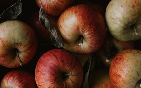 Picture close-up, the dark background, apples, a lot