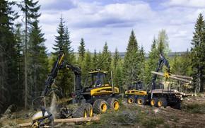 Picture wheel, sawdust, logs, trees, Ponsse harvesting complex, clouds, forestry equipment, Ponsse, logging, forwarder, harvester, loading, …