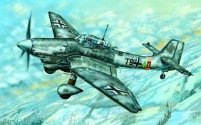 Picture Winter, Ju-87, Ju.87D-5, Dive bomber, Stab III./SG 2, SG 2