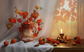 Picture photo, candle, branch, vase, still life