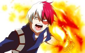 Picture fire, guy, Creek, fad, My Hero Academia, Boku No Hero Academy, Todoroki Shoto, My Hero …