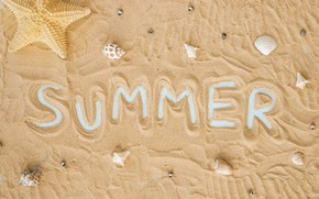 Picture sand, beach, background, texture, shell, summer, beach, texture, background, sand, starfish, seashells